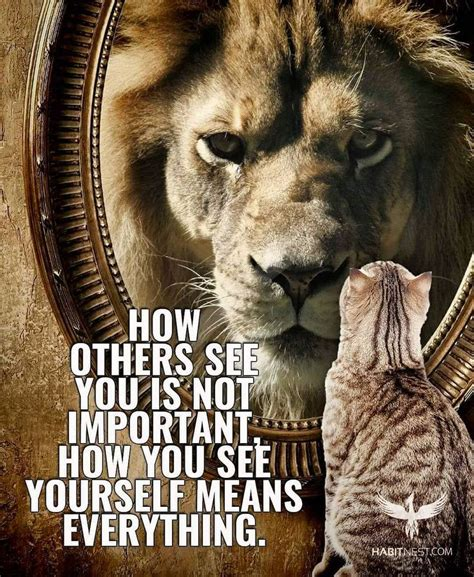 Best Lion Quote Ideas And Images On Bing Find What You Ll Love