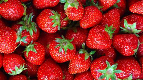 Fresh Photo Hd by Wallpaper Strawberries Fruits Hd 4k Lifestyle 2882