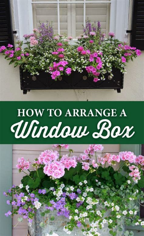 how to arrange a flower bed top 28 how to arrange a flower bed 25 best ideas