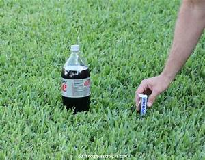 Diet Coke And Mentos Classic Science Experiment