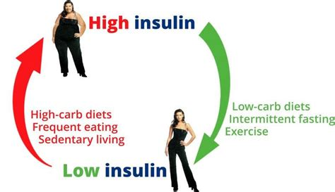 weight control  calories  insulin theory diet doctor