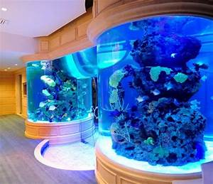 I Have Loved Fish Tanks Like This Ever Since I Was A