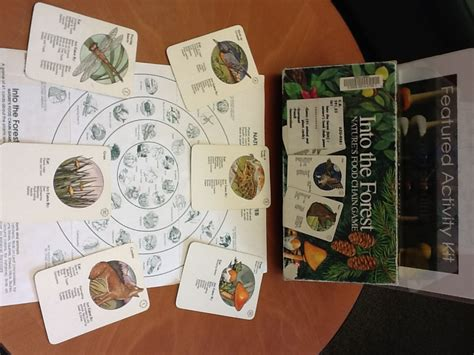 cuisine cr騁oise featured activity kit into the forest food chain library