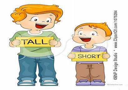 Tall Short Thin Worksheets Kindergarten Comparison Strong