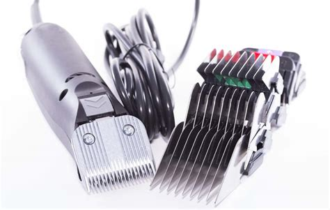 dollars sense premium dog hair clippers worth top dog tips