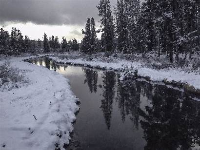 Creek Winter Trees Clipart Yellowstone Usa Wilderness
