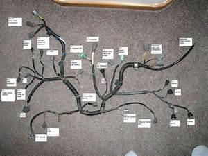 02 Sensor Wiring Diagram B18