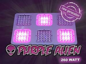 Led Grow Set : led grow box set harz6 led grow shop ~ Buech-reservation.com Haus und Dekorationen