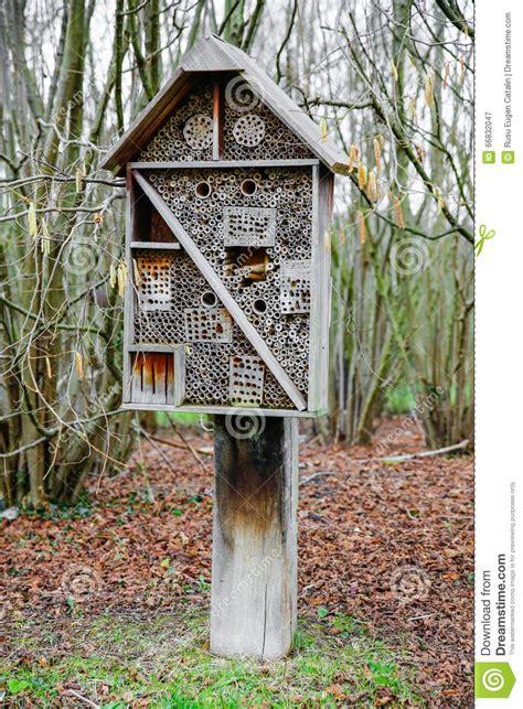 cage 224 la maison pour des oiseaux et des insectes photo stock image 66832047