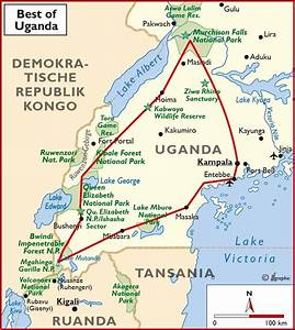 Blitz Reisen Südafrika : uganda gorilla tracking wissenswertes zu permits und ~ Kayakingforconservation.com Haus und Dekorationen