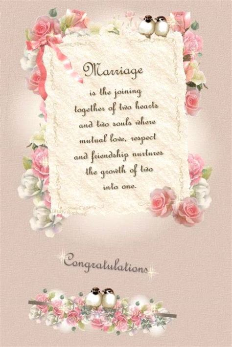 engagement quotes  sister image quotes  hippoquotescom