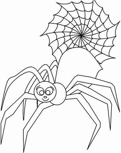 Spider Coloring Charlottes Insekt Ausmalbilder Printable Animal