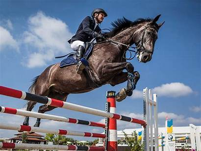 Jumping Horses Horse Jump Equestrian Jumpers Water
