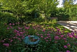 Asche Gut Für Pflanzen : ppige pflanzen im gut gepflegten garten f r eine pr chtige landschaft ~ Markanthonyermac.com Haus und Dekorationen