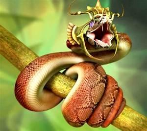 King Snake HD Pictures, Fantastic Snake Wallpaper ...