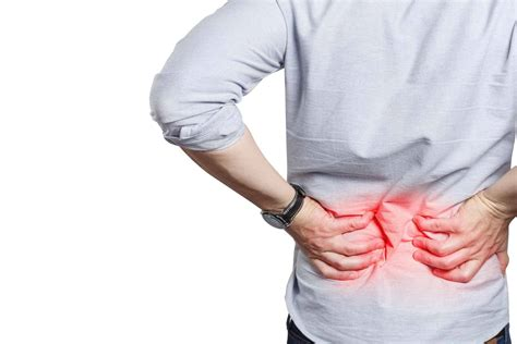 Causes of Discogenic Low Back Pain | Blackberry Clinic