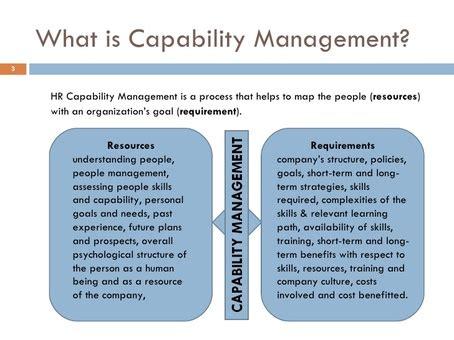 business capability management executive