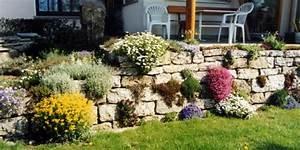 Pflanzen Für Trockenmauer : trockenmauer ~ Orissabook.com Haus und Dekorationen
