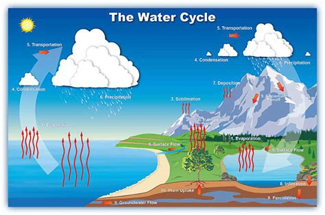 Water Cycle Images What Is The Water Cycle And Can The Cycle Be Disrupted