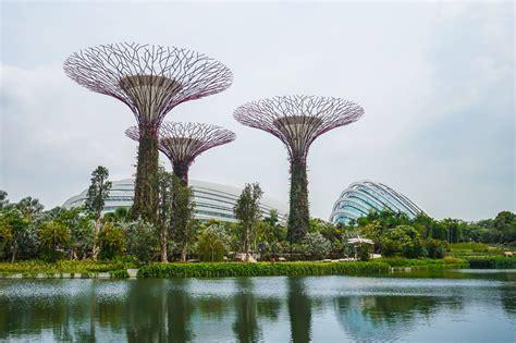 dragonfly lake marina bay park singapore fun life crisis