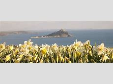 Richards of Cornwall the bulb specialist Quality Cornish