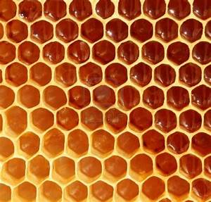 GREEN SCRIBE  Honeycomb