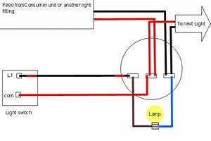 Malibu Light Wiring Diagram Schematic