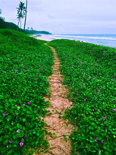 kerala india varkala town resort beach visit