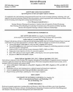 Resume internet sales self employed for Software executive resume