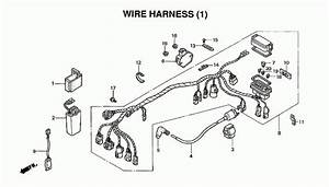 33 Honda Rancher 350 Parts Diagram