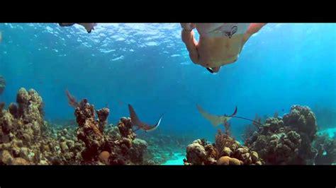 Into the Blue 2005 Jessica Alba BluRayRip SAMPLE - YouTube