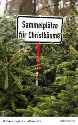 m 252 nster wie entsorge ich meinen weihnachtsbaum
