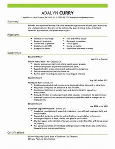 resume examples for a security job resume ixiplay free With free security resume
