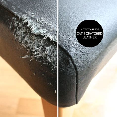 repair cat scratched leather diys leather couch