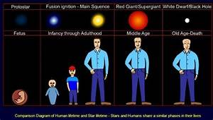 Star Formation - Stellar Evolution - Life Cycle Of A Star ...