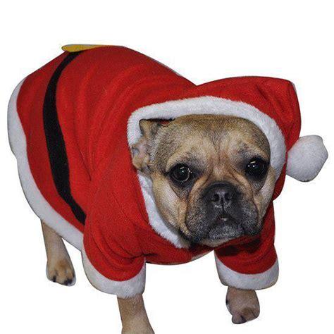 Buitenspeelgoed Voor Honden by Bol Honden Kerst Pakje