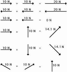 vector addition worksheets graphing vector With free body diagram draw the free body diagram of thebeam which supports