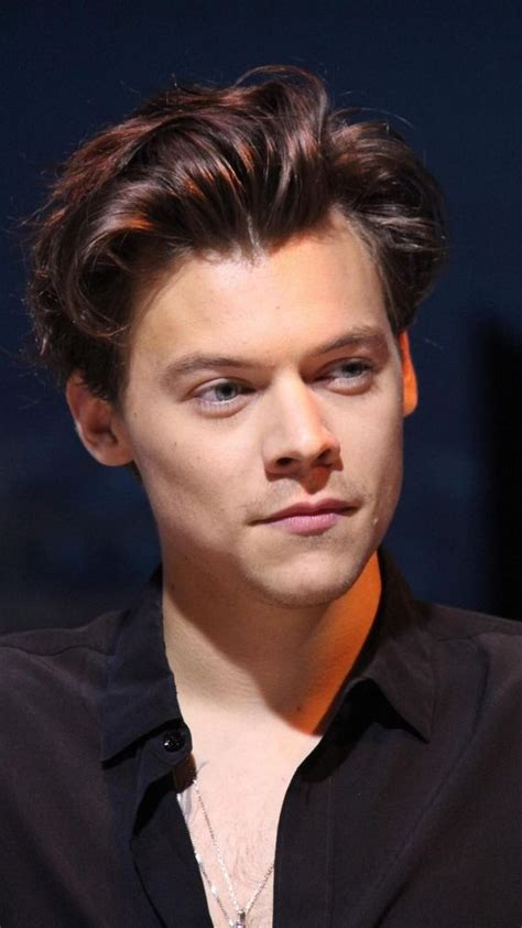Harry Styles Hairstyle
