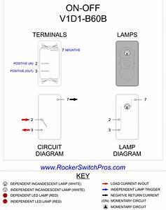Double Rocker Switch Wiring Diagram