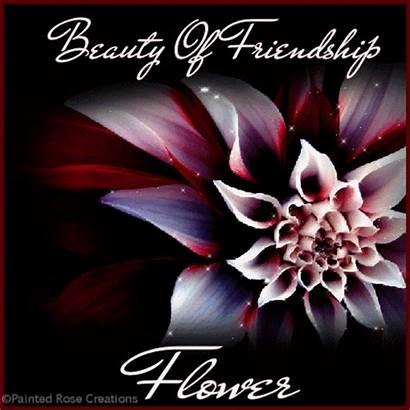 Friendship Flower Beauty