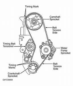 Timing Belt Diagram