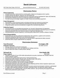 internal auditor resume best template collection With internal resume format