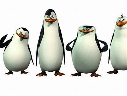 Madagascar Penguins Penguin Smile Wave Boys Cartoon