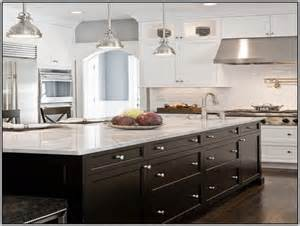 painted kitchen cabinets with white appliances paint