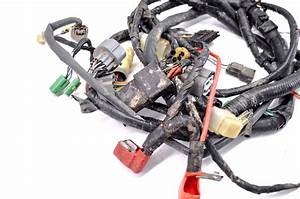 00 Honda Foreman 450 4x4 Es Wire Harness Electrical Wiring