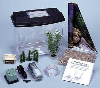 aquarium fish buy fish tank supplies