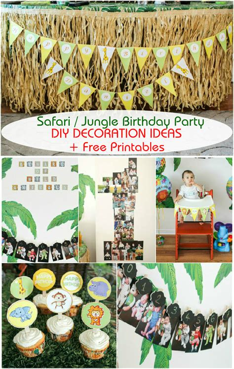 safari jungle themed  birthday party cheap party
