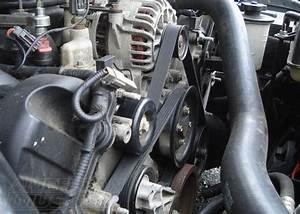2003 Mustang Cobra Belt Diagram Html