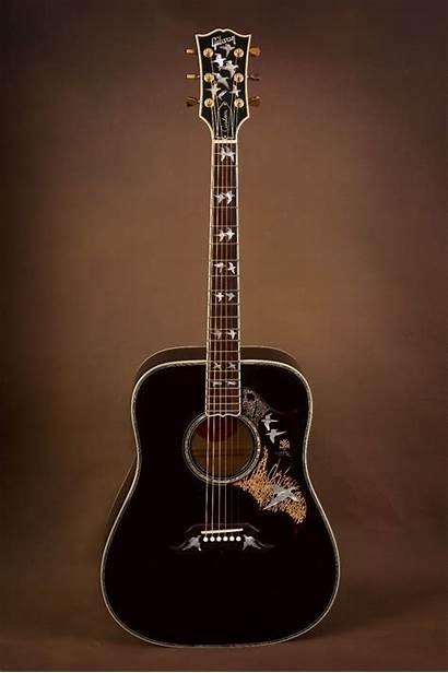 Gibson Acoustic Guitars Guitar Flight Doves Hummingbird