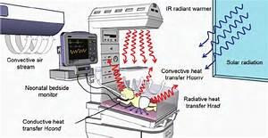 Heat Transfer Mechanisms Of A Newborn Inside An Open